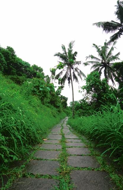 Camphan ridge walk